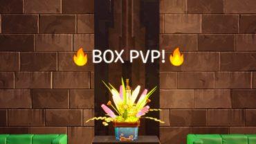 ? BOX PVP 2.0 ?