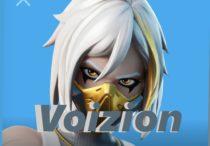 Voizion
