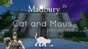 Madbury Cat and Mouse