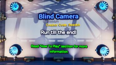 Blind Camera