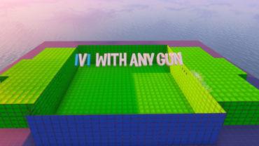 1V1 WITH ANY GUN