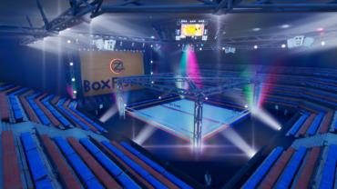 Arena BoxFight