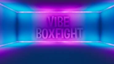 VIBE BOXFIGHT