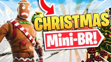 Winter Wonderland Mini BR!
