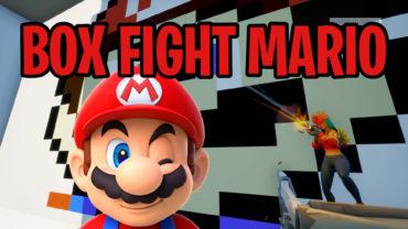 Box Fight Mario