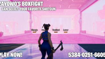 Zayowo's BoxFight