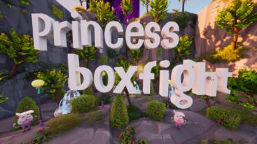 Princess BoxFight