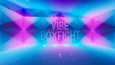 VIBE BOXFIGHT 2.0