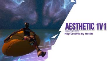 Aesthetic 1V1