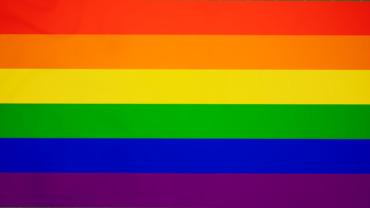 Pride Flag (LGBTQIA+) [1]