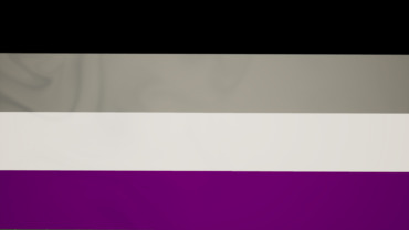 Pride Flag (ASexual)