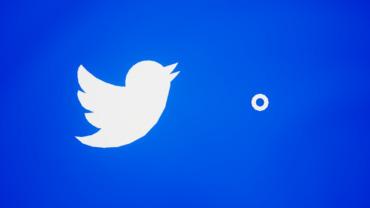 Twitter Blue/White