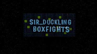 SIR_DUCKLING BOXFIGHTS